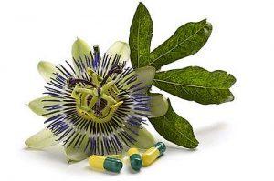 Viele Gesundheitsprobleme lassen sich mit Passiflora lindern.